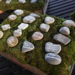 """Escort """"cards"""" -river rocks with guest's names & table numbers on a bed of moss."""